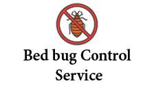 Bedbugs control service