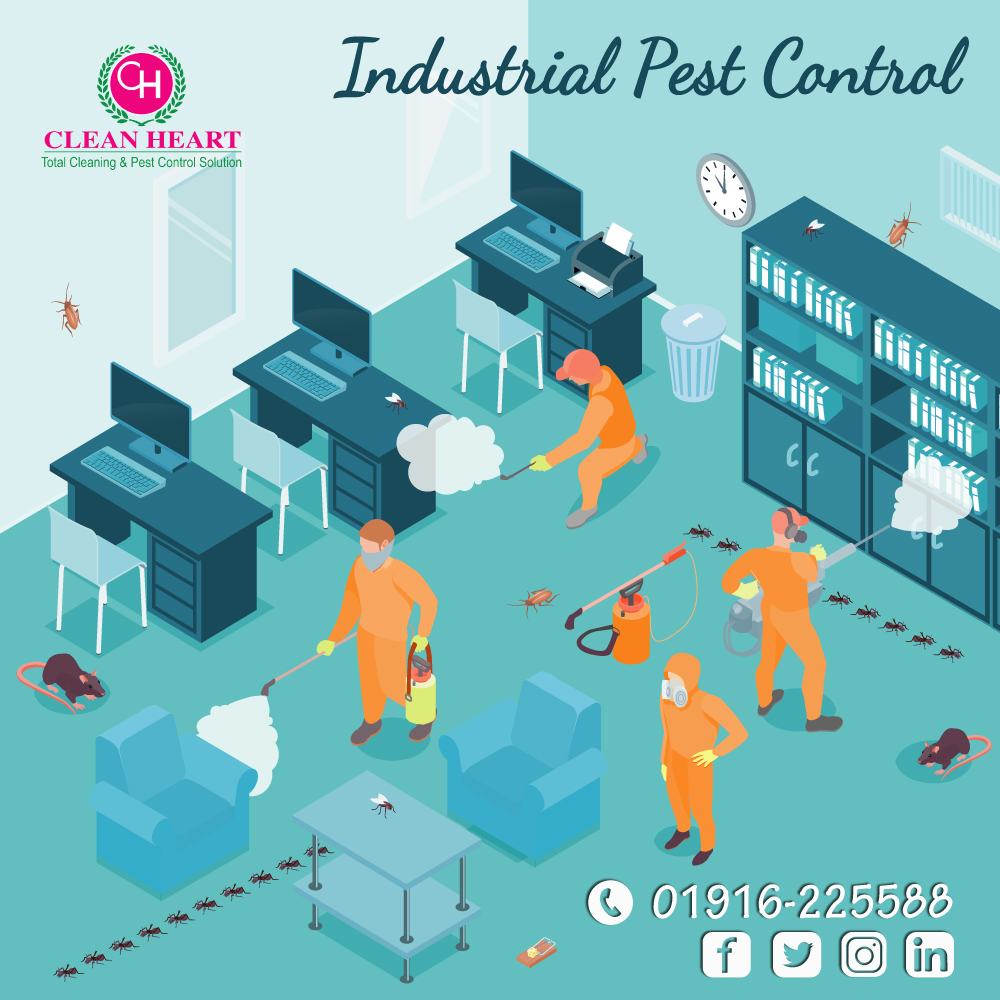 Industrial cleaning service at dhaka